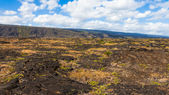 Lava Fields Panorama — Stock Photo