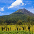 Stock Photo: Arenal Volcano Landscape