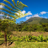 Costa Rica Landscape — Stock Photo