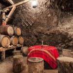 Bulgarian Wine Cellars — Stock Photo #16031093