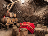 Bulgarian Wine Cellars — Stockfoto