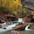 Stock Video: Virgin River on a Rainy Day