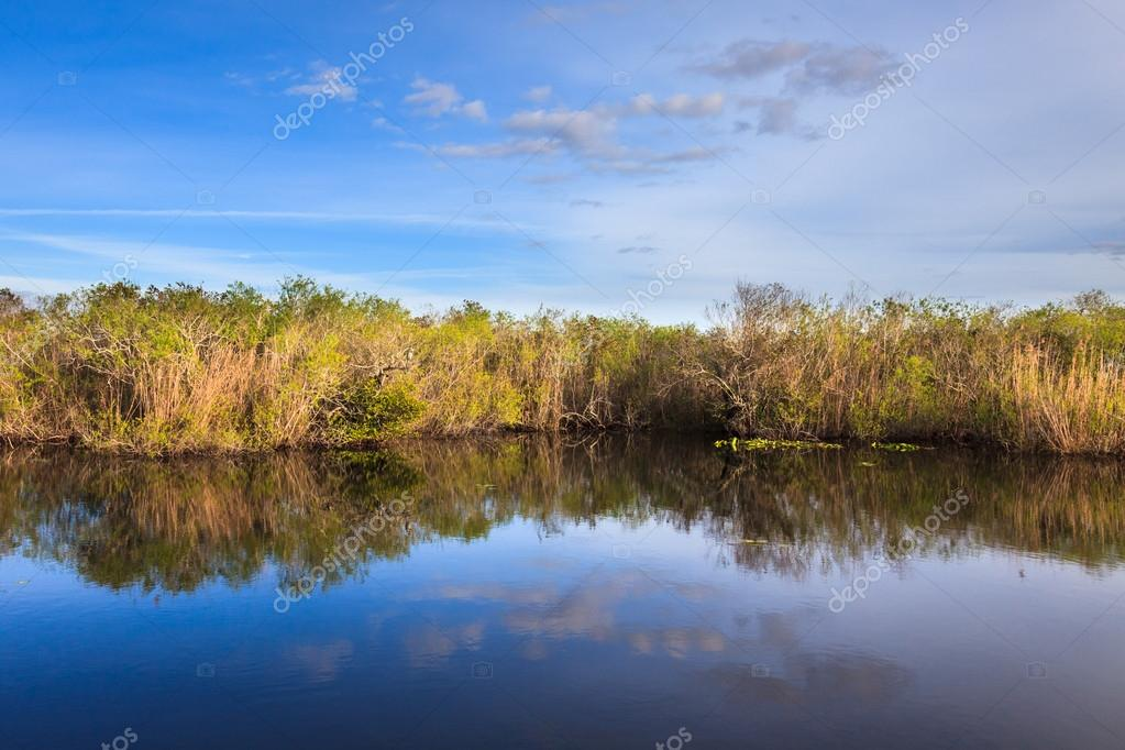 Everglades pond seen from the Anhinga Trail. — Stock Photo #18103601