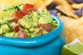 Guacamole Bowl Closeup — Stock Photo