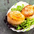 Pan Seared Scallops on a Half Shell — Stock Photo