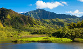 Kauai Mountains — Stock Photo