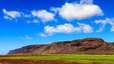Farmland in Kauai — Stock Photo