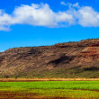 Stock Photo: Kauai Farmland