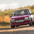 ������, ������: Peugeot 205 rally car