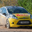 Ford Fiesta rally car — Stock Photo