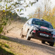 Постер, плакат: Citroen DS3 rally car