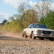 Постер, плакат: Nissan 240RS rally car