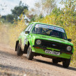 图库照片: Ford rally car