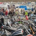 ������, ������: Wheels Day Festival