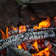 Bonfire - Stockfoto