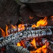 Bonfire - Foto Stock