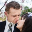 Newlyweds - Stockfoto