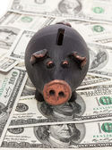 Money and piggy bank — Stock Photo