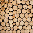 Foto de Stock  : Pile of wood logs