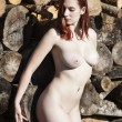 Nude woman and pile of wooden logs — Stock Photo