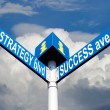 Stock Photo: Strategy blvd and success ave