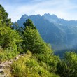 View of High TatrMountains from hiking trail. — Stock Photo #30309579