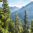 View of High TatrMountains from hiking trail. — Stock Photo #30309581