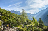 Tourists on mountain trail in High Tatra Mountains — Stock Photo