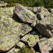 Stones background — Stock Photo #30347835