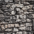 Wall of an old castle — Stock fotografie