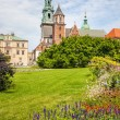 Historic castle in old Krakow — Stock Photo #30450741