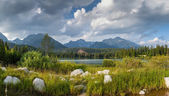 Panorama of mountain lake in National Park High Tatra — Foto Stock