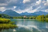 Mountain lake in High Tatra — Stock Photo