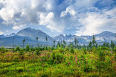 National Park High Tatra. Slovakia — Stock Photo
