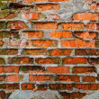 Grunge old brick wall  — Stockfoto