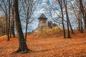 Old castle in autumn forest — Stock Photo