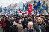 KIEV, UKRAINE - NOVEMBER 24: EuroMaidan — Stock Photo