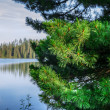 Mountain lake in High Tatra — Stock Photo