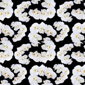 White orchid seamless pattern — Stock Photo