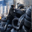 Stock Photo: KIEV, UKRAINE - January 26, 2014: Mass anti-government protests