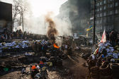 KIEV, UKRAINE - January 26, 2014: Mass anti-government protests — Stock fotografie
