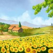 Sunflowers field - Stock Photo