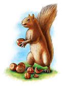 Hazelnuts and squirrel — Stock Photo