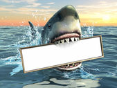 Shark advertising — Stock Photo