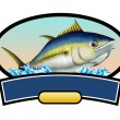 Tuna fish — Stock Photo