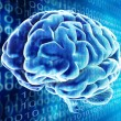 Brain background — Stock Photo
