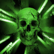 Skull background — Stock Photo #25384983