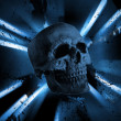 Royalty-Free Stock Photo: Skull background