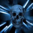 Skull background — Stock Photo #25386079