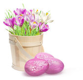 Easter decoration with pink crocuses and eggs — Stock Photo